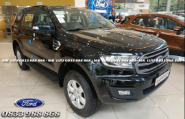 FORD EVEREST AMBIANTE MT